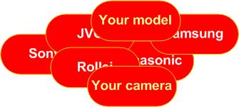 camera_names